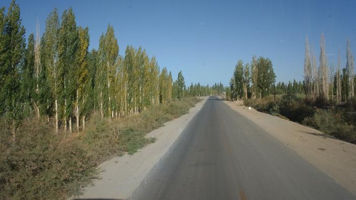 離開哈密中,也是從車尾巴往後拍的,這條路是舊國道