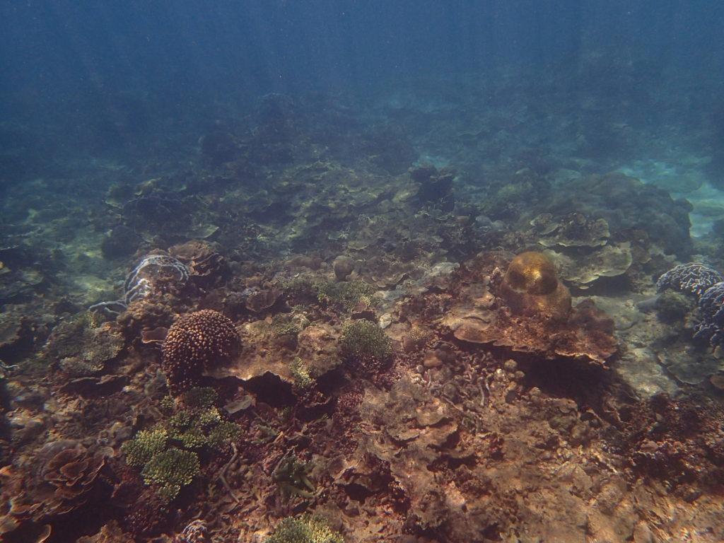 陽光穿透的海底